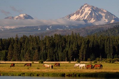 Black Butte Ranch Resort 1 of 30