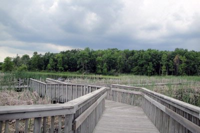 Horicon Marsh Wooden Bridge 13 of 14