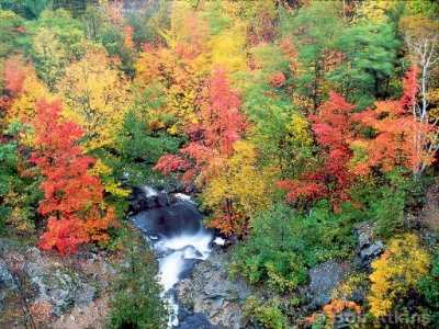 Autumn Foliage In Southern New Hampshire 6 of 31