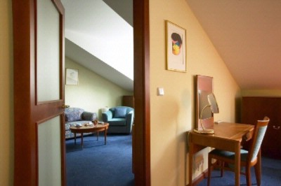 Junior Suite 12 of 15