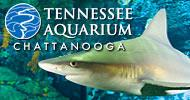 Ask For Coupons To The Tennessee Aquarium At The Front Desk 22 of 24