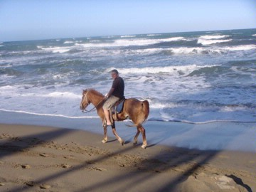 Horseback On The Beach 11 of 15