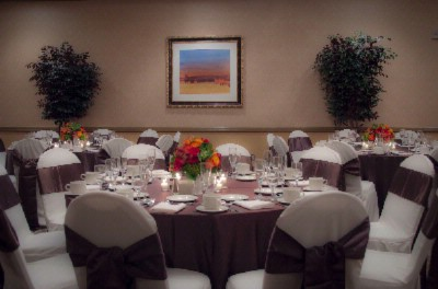 Let The Embassy Suites South San Francisco Airport Hotel Host Your Next Special Occasion! 12 of 14