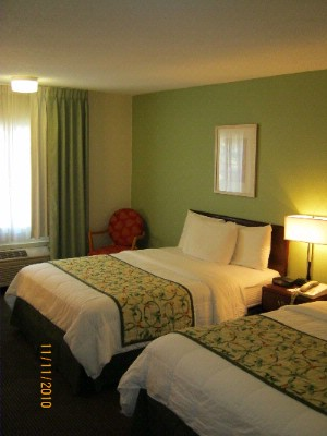 Newly Renovated Rooms! 8 of 11