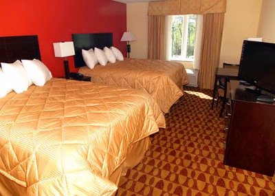 2 Queen Bed Room 3 of 10
