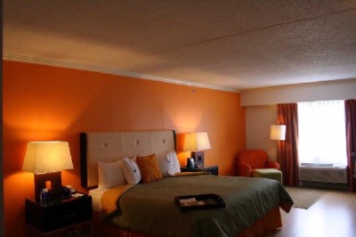 Vibrant King Guestroom 10 of 13