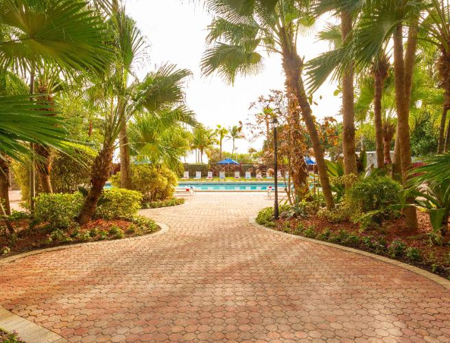 Garden Path To The Pool At The Seagull Hotel Miami Beach 9 of 20
