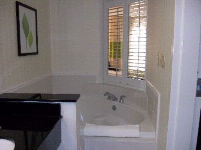 Jacuzzi Suite 7 of 14