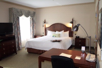 This Spacious Non-Smoking Studio Suite Contains A Luxurious King-Sized Bed 32\'\' Lcd Television Easy To Operate Alarm Clock/radio A Comfortable Desk And Workspace And A Plush Sofa Bed. The High-Speed Internet Access Will Help You Stay Connected Wh 5 of 21