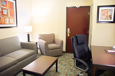 Mini Suite -Living Area 21 of 24