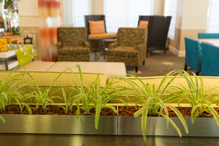 Relax In Our Lobby Area While Reading A Book Watching Television Or Visiting With Friends And Family. 6 of 16
