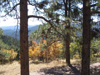 Mt. Falcon Park 15 Min. From Hotel 15 of 17