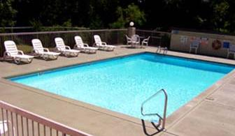 Our Beautiful Outdoor Pool Is Perfect For That Rest And Relaxation Time! 6 of 6