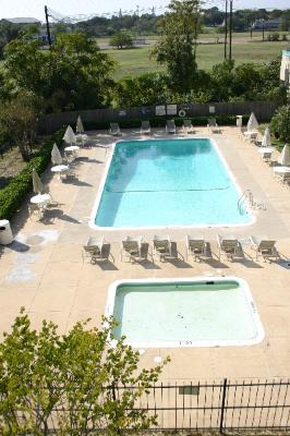 Large Nicely Landscaped Outdoor Pool 8 of 10