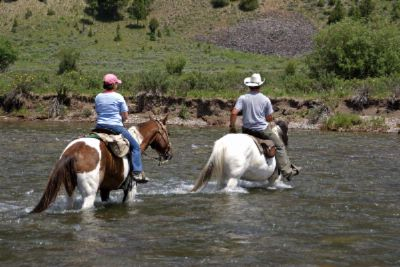 Horse Back Ride In The Verde River 7 of 17