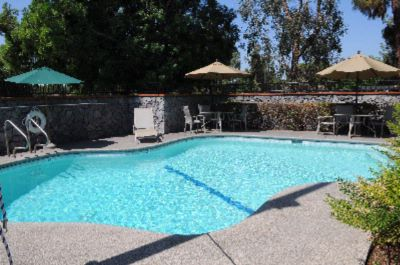 Enjoy Warm Sun In Our Sparkling Pool 6 of 9