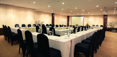 Anila Meeting Room 6 of 11