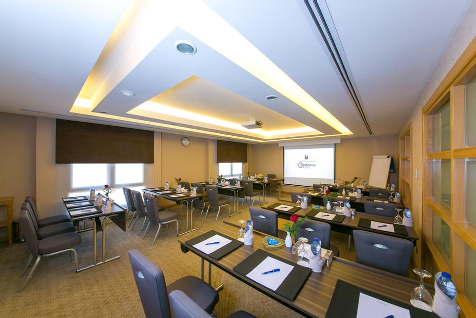 Daheya Meeting Room 10 of 10