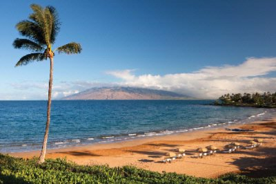 Image of Four Seasons Resort Maui