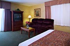 Jacuzzi Suite Room 4 of 11