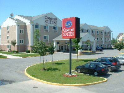 Comfort Suites Rochester 2 of 2