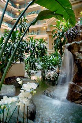 Indoor Atrium Features A Waterfall & Koi Fish 4 of 9