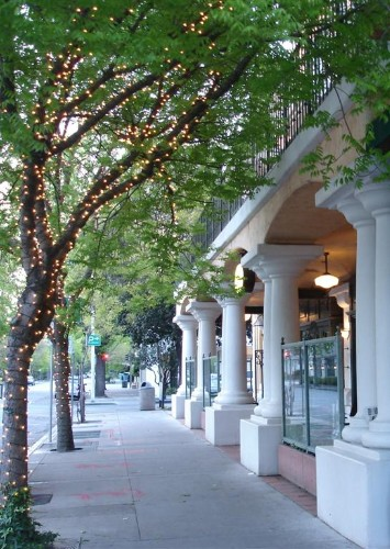 Downtown Palo Alto Tree Lined Streets 21 of 21