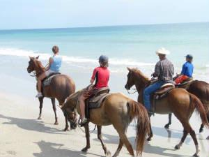 Horseback Riding On Fort Pierce\'s Beaches 13 of 20