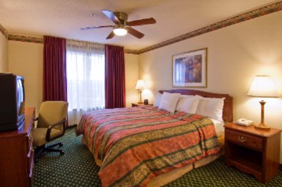 Our 1 Bedroom King Bed Suite With Plush Serta Mattresses. 10 of 13