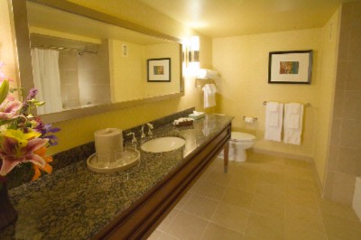 Executive Suite Bathroom 11 of 13