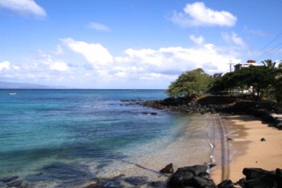 Sandy Cove Is Perfect For Swiimming And Snorkeling 3 of 8