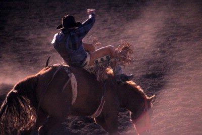 Experience The West At The National Western Stock Show Each January 6 of 11