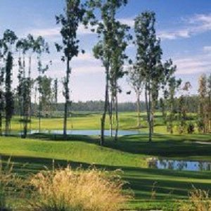 Nearby Golf Courses Is Just One Of The Many Local Attractions In Santa Maria Ca 13 of 16