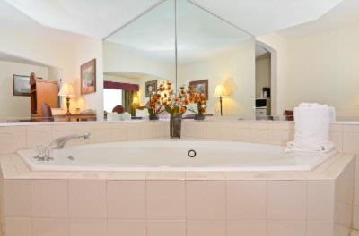 Jacuzzi Suite 8 of 11