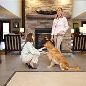 We Are A Pet Friendly Hotel W/designated Pet Walk Areas 29 of 31