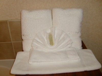 Our Thick Thirsty Towels Are Ready And Waiting For You To Snuggle Up In After Your Hot Shower! 27 of 27