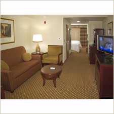 Suite Available W/ King Or 2 Queen And Sofa Bed 13 of 20