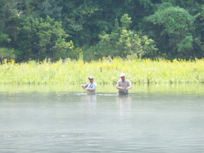 Fly Fishing On Lake Taneycomo 8 of 12