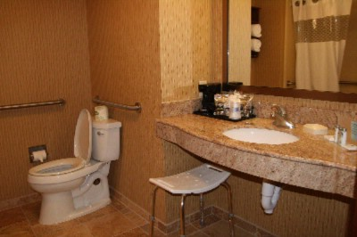 Handicap Accessible Bathroom 19 of 27