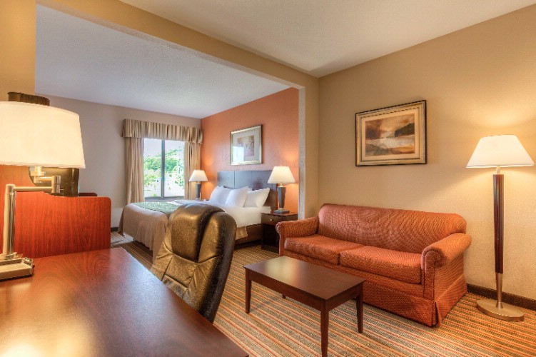 Comfort Inn & Suites-Cave City-King Suite 7 of 11