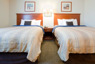 Two Queen Size Bed In Suite 9 of 14