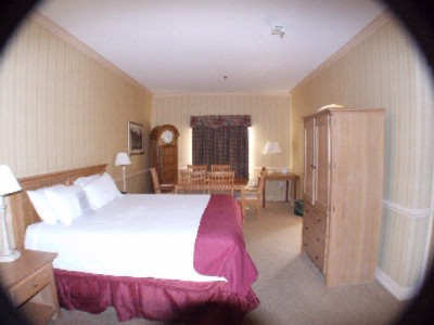 Two Room Single King Bed Jacuzzi Suite 13 of 23