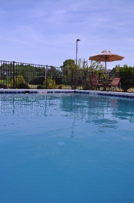 Outdoor Saltwater Pool 4 of 13