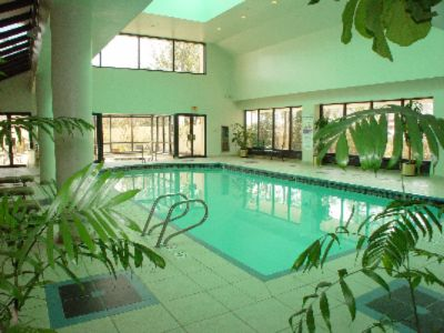 Indoor Swimming Pool And Jacuzzi 4 of 7
