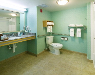 Handicap Accessible Bathroom 15 of 22