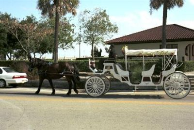Enjoy A Carriage Ride 4 of 8