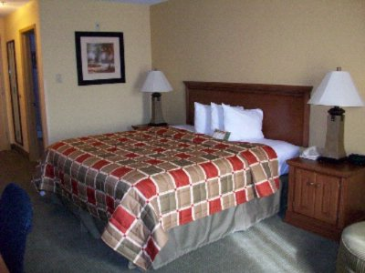 Spacious Room With King Size Bed 6 of 6