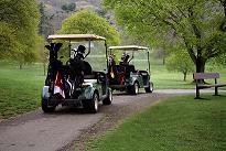 Carts On The Course 13 of 17