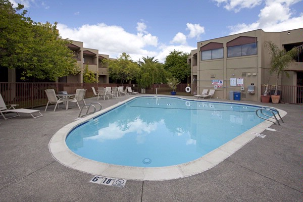 Outdoor Seaonally Heated Pool 6 of 22