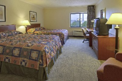 Large Double-Bedded Room 3 of 6